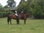 Pony Camp 2014 (2)