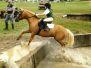 Pony Camp 2011